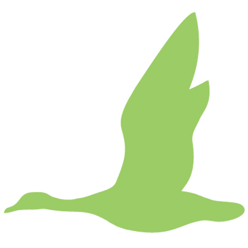 flying goose aom logo